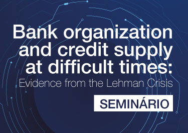 Bank organization and credit supply at difficult times: Evidence from the Lehman Crisis